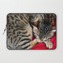 Cute Tabby Cat napping Laptop Sleeve