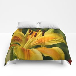Beautiful Yellow Lily Comforters