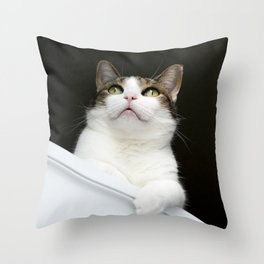 Stanley - A Cat You Can Believe In Throw Pillow
