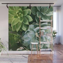 Succulent Succulents Wall Mural
