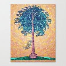 Palmeto tree Canvas Print