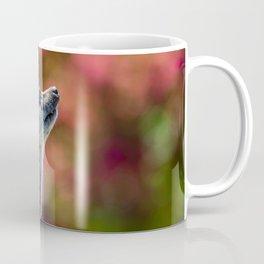 Inquisitive. Coffee Mug
