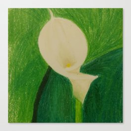 Cala Lily On Abstract Background Canvas Print