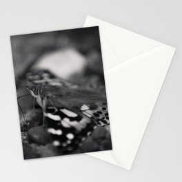 butterfly black and white Stationery Cards