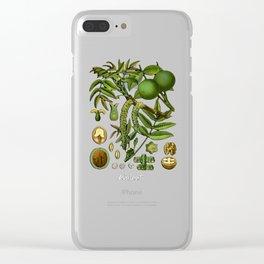 Walnut Clear iPhone Case