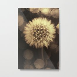 Blowing dandelion II Metal Print