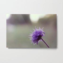Vintage little purple flower Metal Print