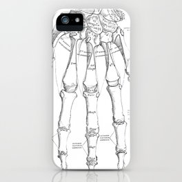 Antique Anatomy Papers Neck Gator Hand Anatomy iPhone Case
