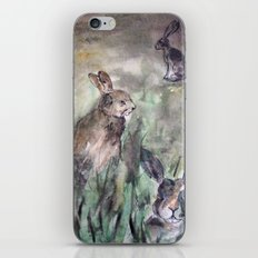 Hare Sketch #1 iPhone & iPod Skin