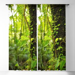 Trunk of the Jungle Blackout Curtain
