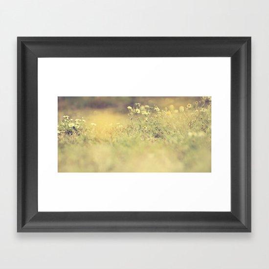 buttercup daisies Framed Art Print