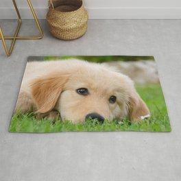Golden Retriever puppy, cute dog Rug