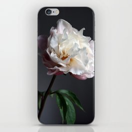 Soft pink peony iPhone Skin