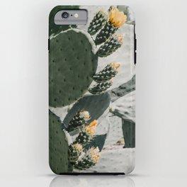 flowering cactus i iPhone Case