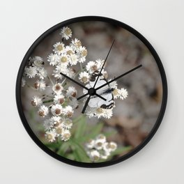 White Pine Butterfly Wall Clock