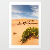 Coral Pink Sand Dunes Art Print