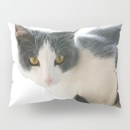 A Max And Mantle Bi Colour Cat Isolated Pillow Sham