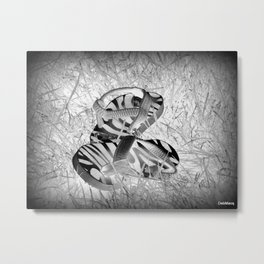 Sandals in the Grass Metal Print