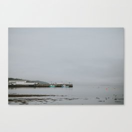 Brier Island Canvas Print