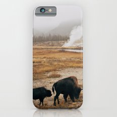 Mother Bison and Calf in Yellowstone National Park iPhone 6 Slim Case
