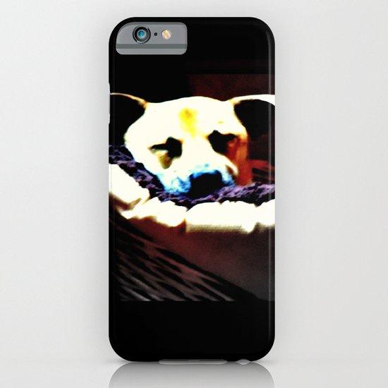 sleeping puppy stuck in basket iPhone & iPod Case