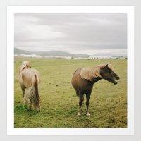 The Horses Art Print