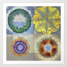 Recogitation Web Flowers  ID:16165-062317-11821 Art Print