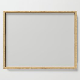 Sherwin Williams Trending Colors of 2019 Nebulous White (Soft Pastel Gray) SW 7063 Solid Color Serving Tray