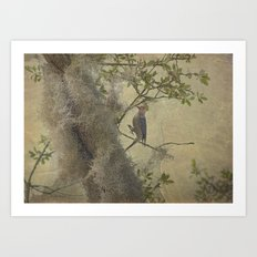 In The Moss Art Print