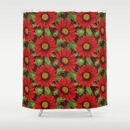 Gaillardia Arizona Red Shades. Flowers illustration Shower Curtain