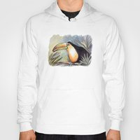toucan Hoodies featuring Toucan by Julie Lemons
