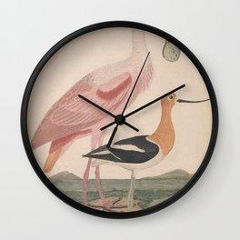 Roseate Spoonbill American Avocet Ruddy Plover Semipalmated Sandpiper13 Wall Clock