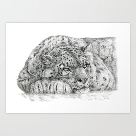 Pensive Snow Leopard  Art Print