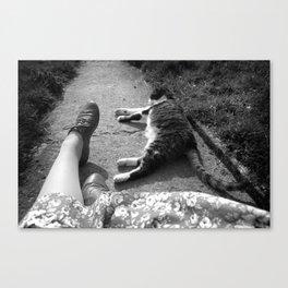 Sleeping cat with feet Canvas Print