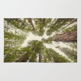 Into the Mist - Nature Photography Rug