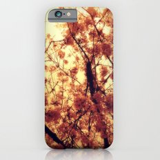 Burst Into Light iPhone 6s Slim Case