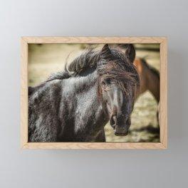Wild Beauty Framed Mini Art Print
