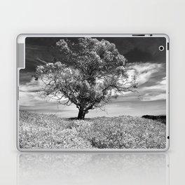 The Noble Gum Tree Laptop & iPad Skin