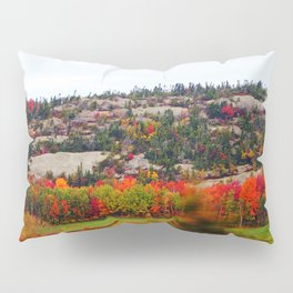 Trees and the Rock Pillow Sham