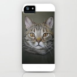 British shorthair cat iPhone Case