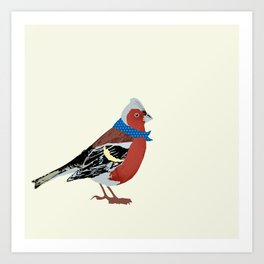 Chaffinch Bird Art Print