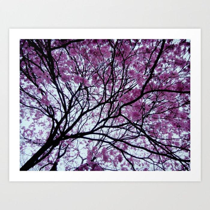 Exotic pink - tropical trees Art Print