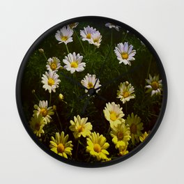 Field of Daisies by Aloha Kea Photography Wall Clock