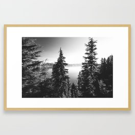 Mountain Lake Forest Black and White Nature Photography Framed Art Print