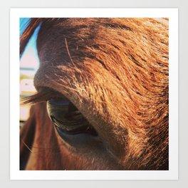 Mustang Eye Art Print