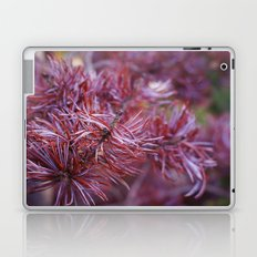 purple pine Laptop & iPad Skin