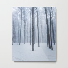 Foggy frozen winter forest Metal Print