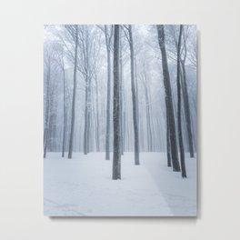 Foggy frozen winter forest Metal Print