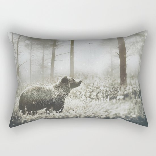 Encounter Rectangular Pillow