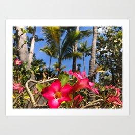 Tropical Pink Bahamian Flowers Art Print